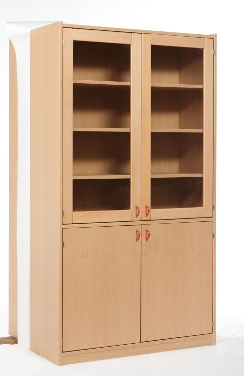 Cabinet with 2 glass doors and 2 full doors